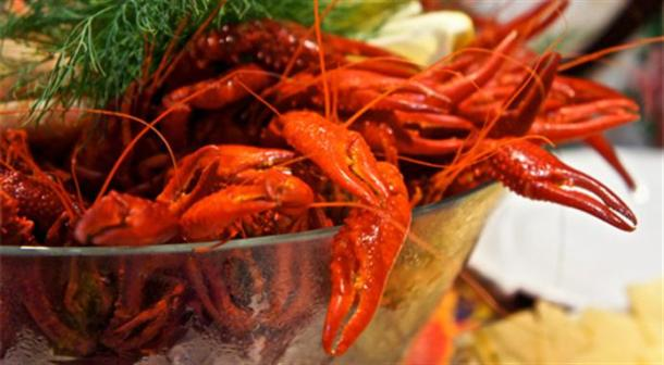 Five steps to the perfect crayfish party fika online for Aquavit and the new scandinavian cuisine