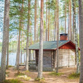 Dream Now, Travel Later: Peace and Isolation in Finland's Wilderness