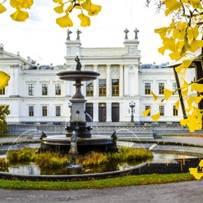 The Complete Guide to Swedish Universities